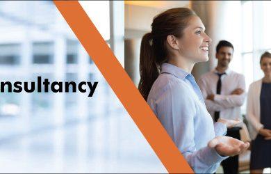 CMMI level 3 certification Consultancy